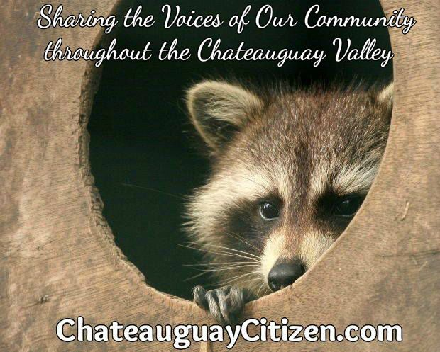 chateauguay chat 2018-5-23 sainte-clotilde is a municipality in the jardins de napierville regional county municipality in quebec, canada, situated in the montérégie administrative region.